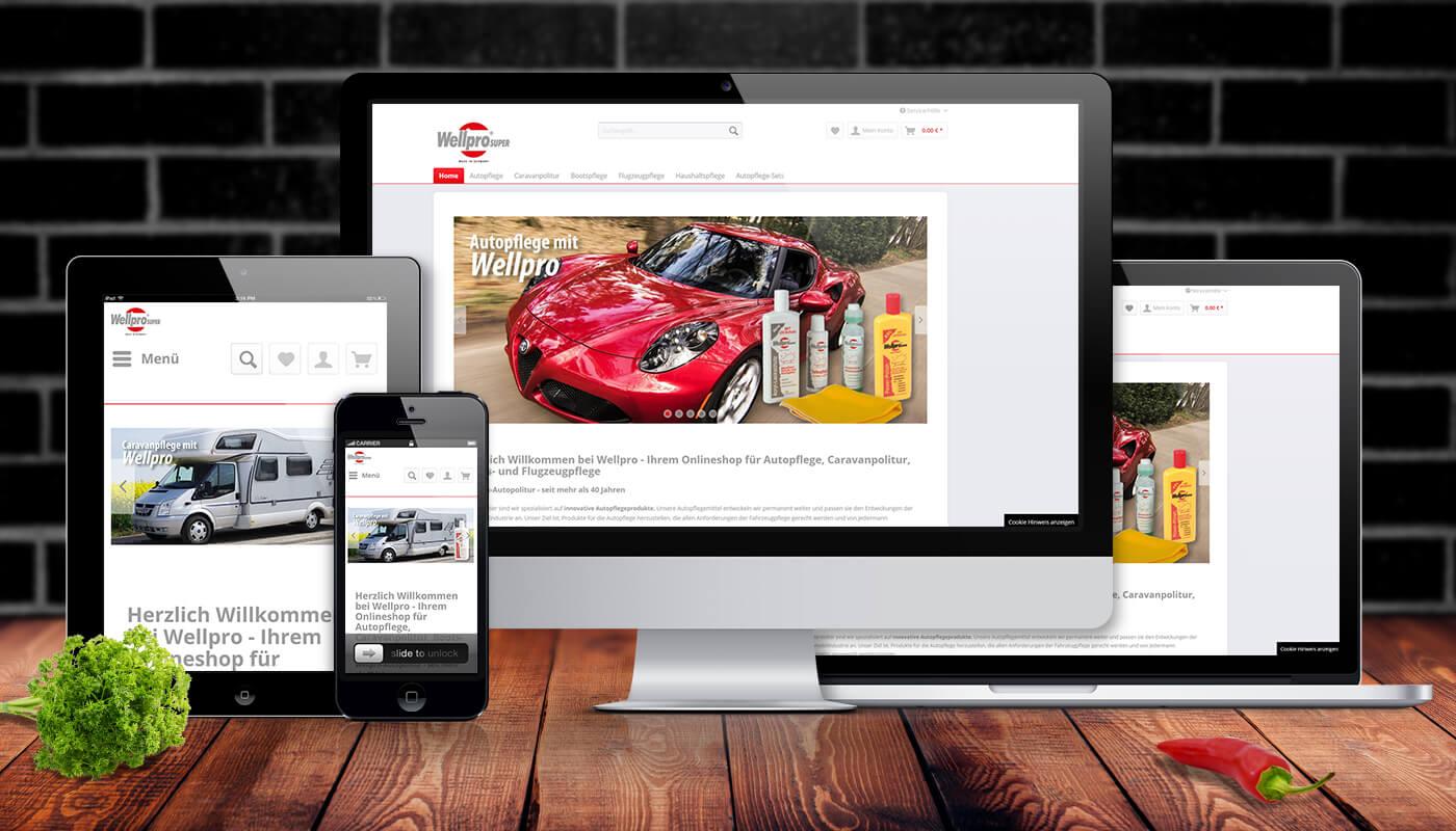 webdesign-coverimg-wellpro